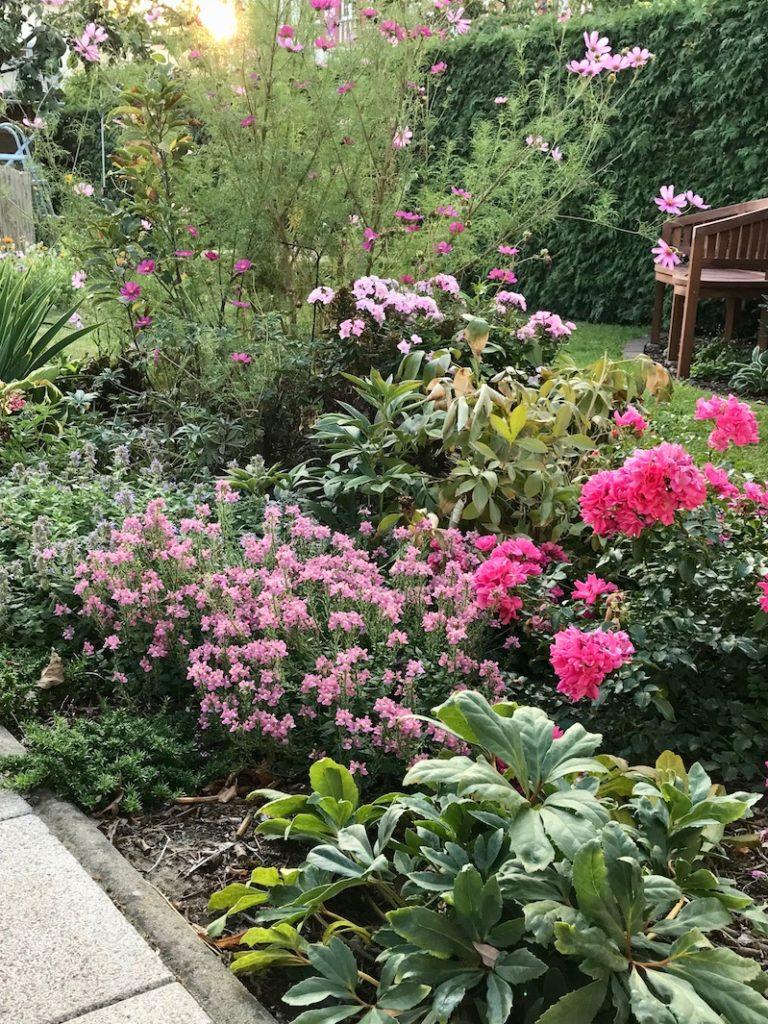 Das Terrassenbeet im September
