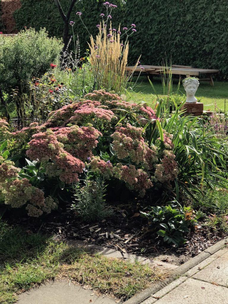 Richtig was geschafft im Garten: Herbstliche Stimmung im Garten