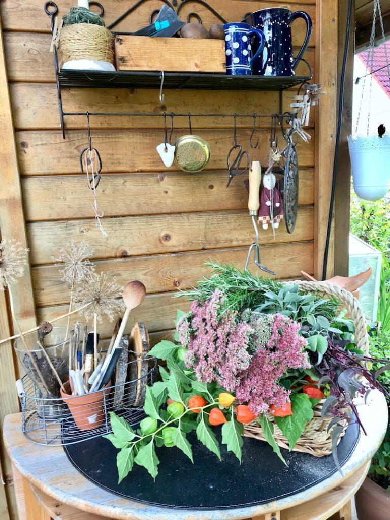 Material für einen herbstlichen Kranz findet man nun im Garten ausreichend