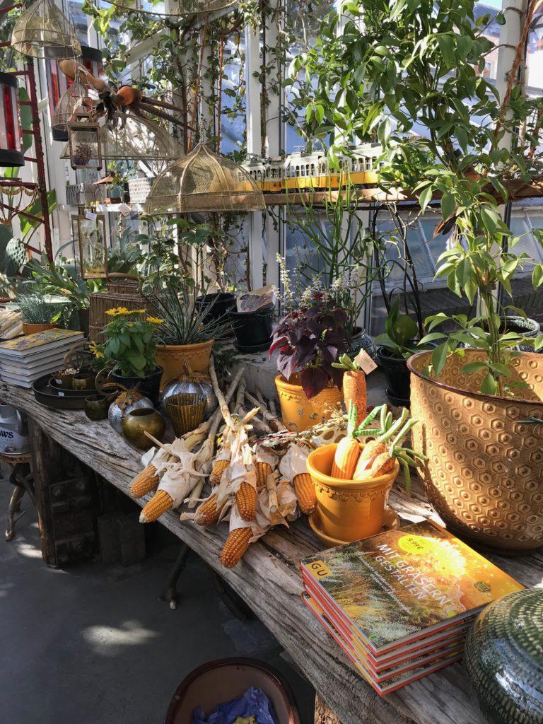 Goldene Herbsttage: Königliche Gartenakademie