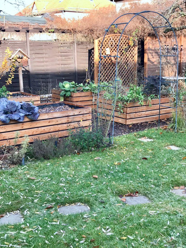 Gartenarbeiten im Dezember: die Hochbeete