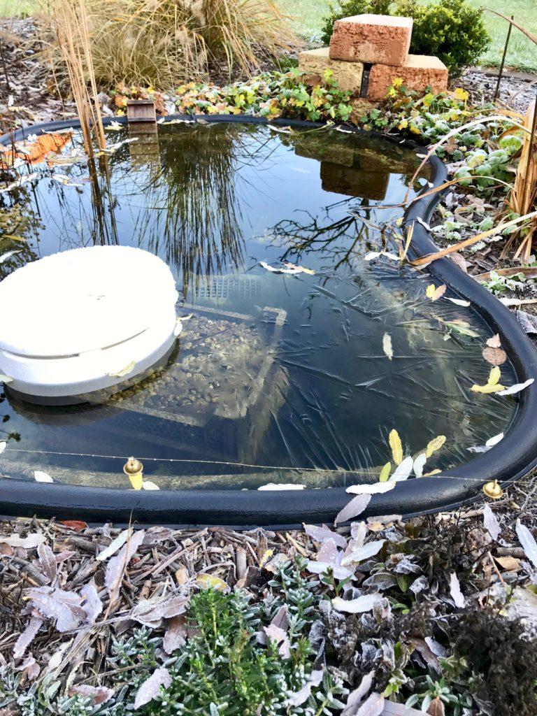 Der Teich ist winterfest