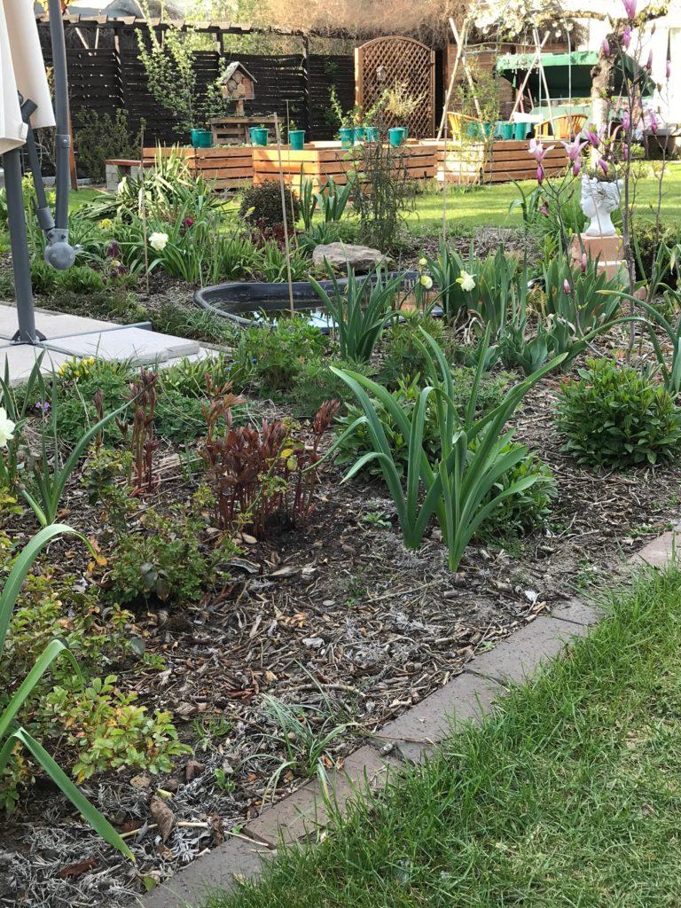 Der Garten im Überblick