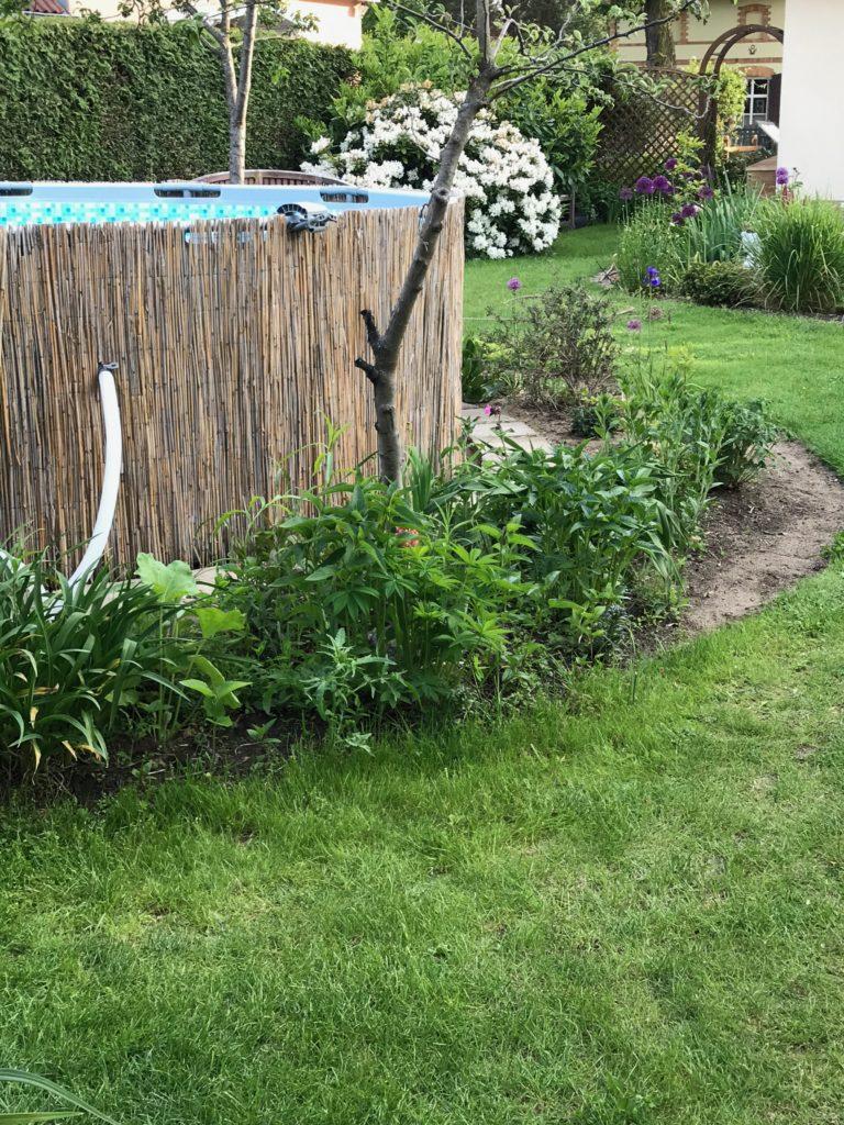 Vom kleinen Glück: Der Pool im Garten